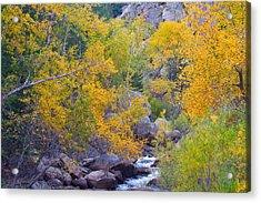 Colorado Rocky Mountain Autumn Canyon View Acrylic Print by James BO  Insogna