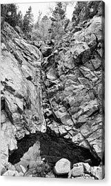 Colorado Rocky Mountain Black Gold Acrylic Print
