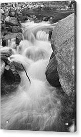 Colorado St Vrain River Trance Bw Acrylic Print by James BO  Insogna