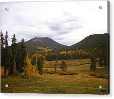 Colorado Trails In Autumn Acrylic Print