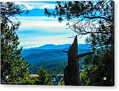 Acrylic Print featuring the photograph Colorado View by Shannon Harrington