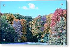 Colored Trees Acrylic Print by Dyana Rzentkowski