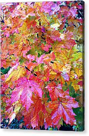 Colorful Autumn Acrylic Print