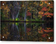 Colorful Forest Acrylic Print by Karol Livote