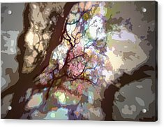 Colorful Tree Acrylic Print