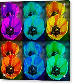 Colorful Tulip Collage Acrylic Print by James BO  Insogna
