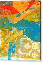 Colors Acrylic Print by Alexandra Sheldon