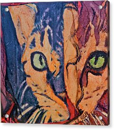 Colors Of A Cat Acrylic Print by Ruth Edward Anderson