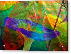Colors Of Autumn Acrylic Print by Shirley Sirois