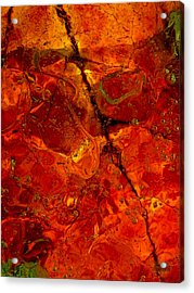 Colors Of Nature 3 Acrylic Print