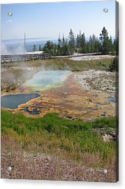 Acrylic Print featuring the photograph Colors Of Yellowstone by Shawn Hughes