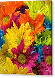 Colossal Colors Acrylic Print