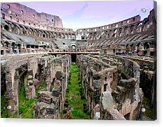 Colosseum Acrylic Print by Luiz Felipe Castro