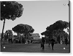 Colosseum Acrylic Print by Marcel Krasner