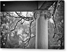 Column In Spring Acrylic Print by Susan Isakson