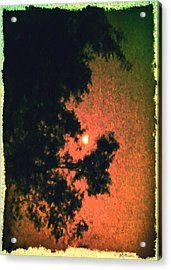 Come Evening Acrylic Print by Brian D Meredith