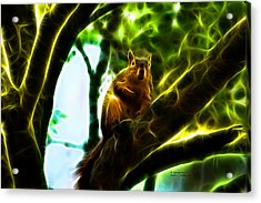 Acrylic Print featuring the digital art Come On Up - Fractal - Robbie The Squirrel by James Ahn