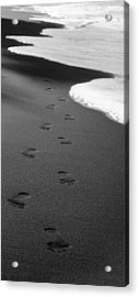 Come To Me.... Acrylic Print by Tony and Kristi Middleton