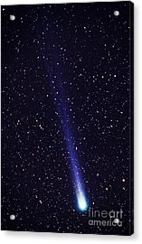 Comet Hyakutake Acrylic Print by Jerry Schad and Photo Researchers