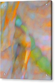 Acrylic Print featuring the digital art Comfort by Richard Laeton