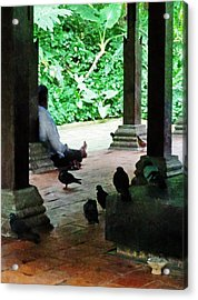 Communing With The Birds Acrylic Print by Steve Taylor