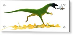 Compsognathus Acrylic Print by Jane Burton and Warren Photographic and Photo Researchers