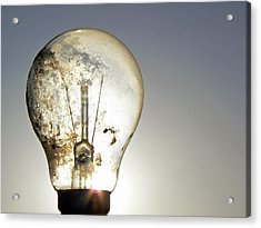 Acrylic Print featuring the photograph Concept Illumination  by Pamela Patch