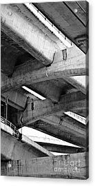 Concrete Jungle Canopy Acrylic Print by L E Jimenez