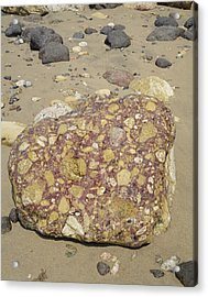 Conglomerate Boulder Acrylic Print by Dirk Wiersma