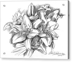 Conte Pencil Sketch Of Lilies Acrylic Print