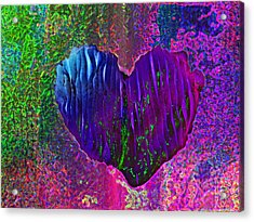 Acrylic Print featuring the photograph Contours Of The Heart by David Pantuso