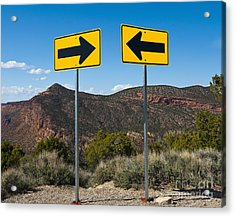 Contradictory Road Signs Acrylic Print