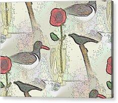 Contrast1 Acrylic Print