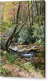 Acrylic Print featuring the photograph Cool Creek by Margaret Palmer