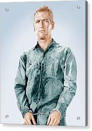 Cool Hand Luke, Paul Newman, 1967 Acrylic Print by Everett