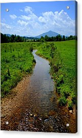 Cool Mountain Stream Acrylic Print by Frozen in Time Fine Art Photography