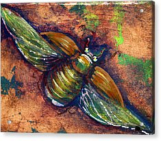Copper Beetle Acrylic Print