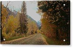Copper Lane Acrylic Print