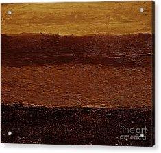 Coppertone Acrylic Print by Marsha Heiken