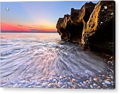 Coquillage Acrylic Print by Debra and Dave Vanderlaan