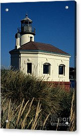 Acrylic Print featuring the photograph Coquille Light by Sharon Elliott