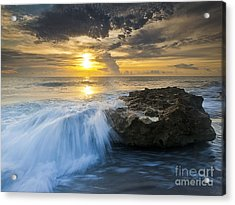 Coral Cove Acrylic Print by Bruce Bain