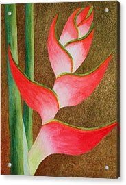 Coral Lobster Claw Heliconia With Gold Leaf Acrylic Print by Kerri Ligatich