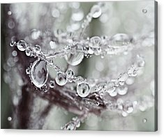 Corned Jewels Acrylic Print by Susan Capuano