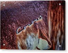 Coronet Acrylic Print by Richard Steinberger