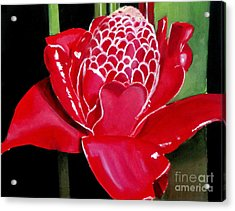 Costa Rican Beauty Acrylic Print