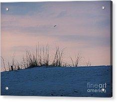 Cotton Candy Sky Acrylic Print by Jeanne Forsythe