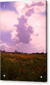 Cotton County Landscape Acrylic Print by Toni Hopper