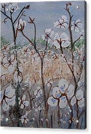 Cotton Patch Acrylic Print by Spencer  Joyner