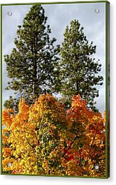 Country Color 24 Acrylic Print by Will Borden